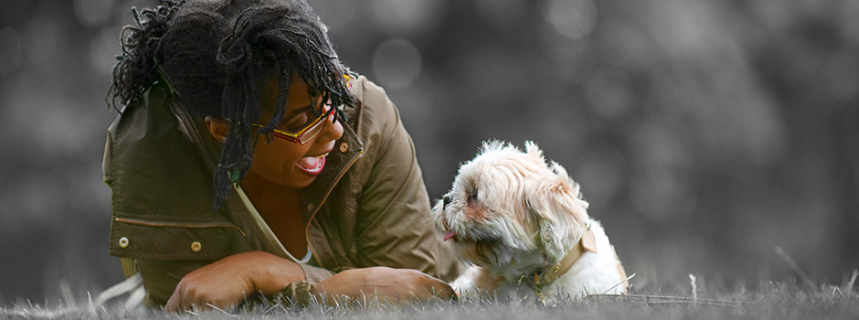 White dog laying in grass with owner